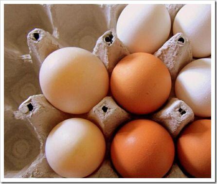 tipos-trazabilidad-alimentaria